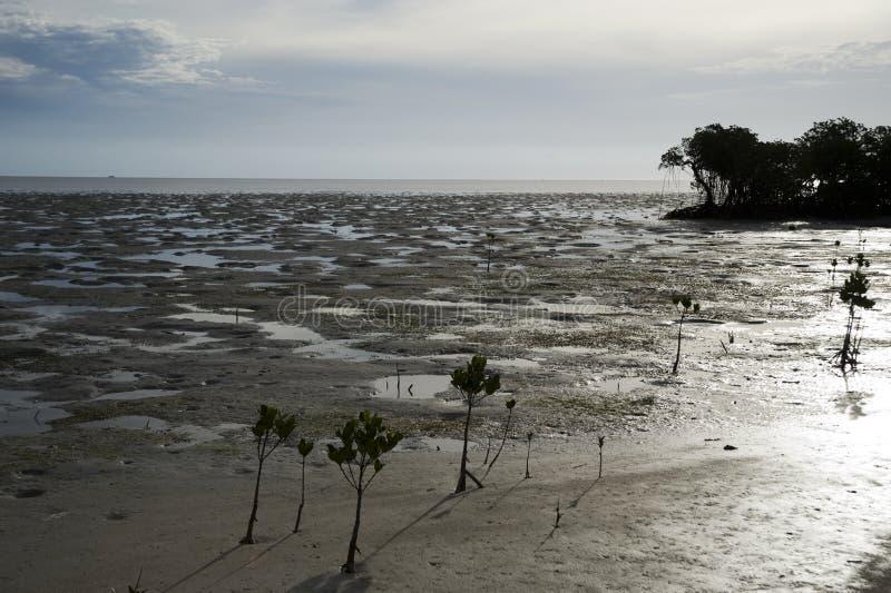 海滩ouano 库存照片
