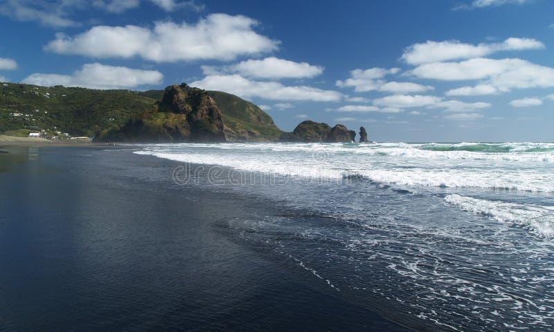 海滩piha 库存照片