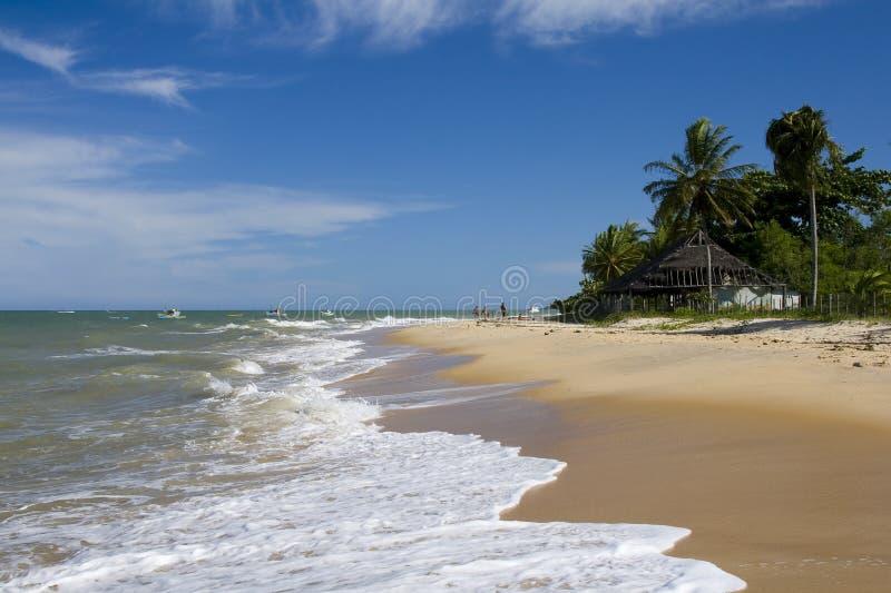 海滩trancoso 库存照片
