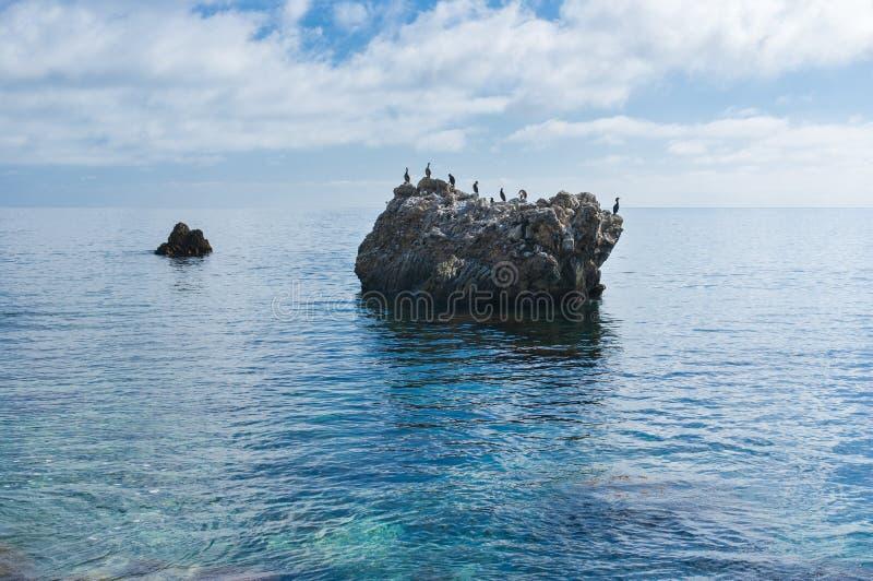 黑海狂放水scape 库存照片