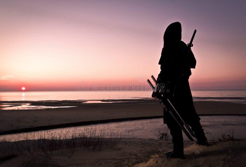 海的刺客 免版税库存图片