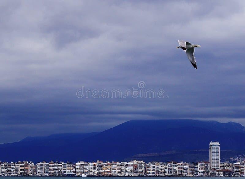 从海的看法土耳其城市的伊兹密尔 免版税库存图片