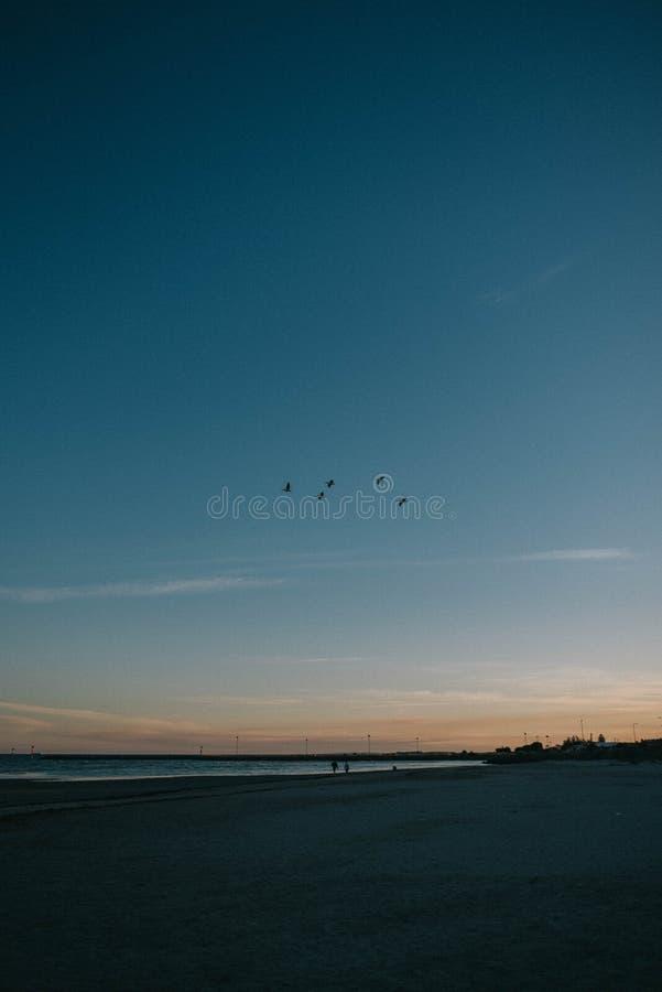 海的美丽的海岸有走动两三的人的 免版税图库摄影