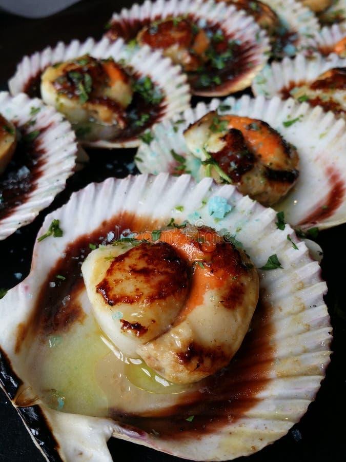 海的食物 免版税库存图片