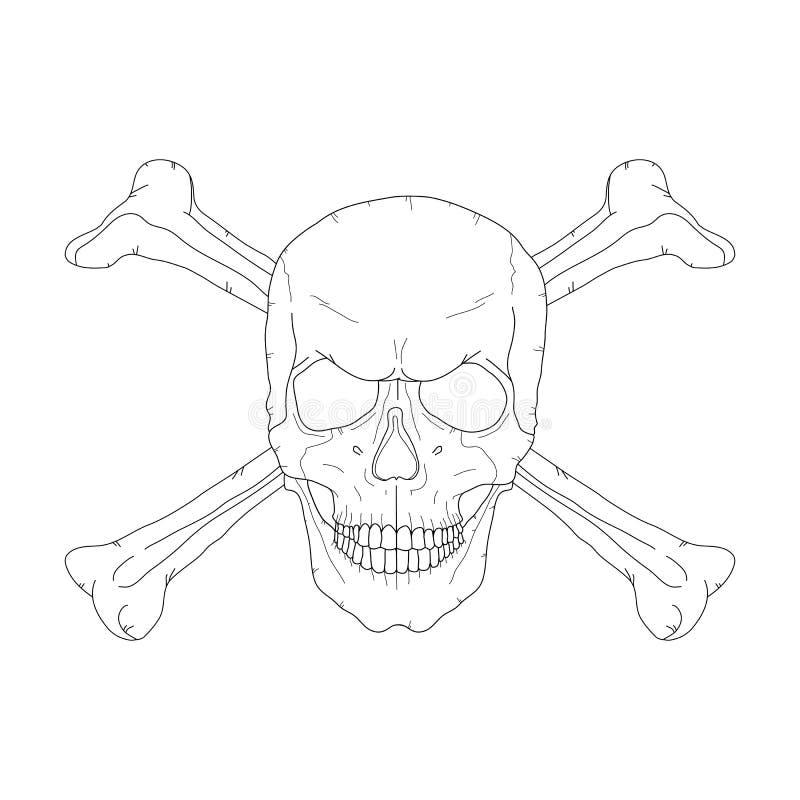 海盗头骨 库存例证