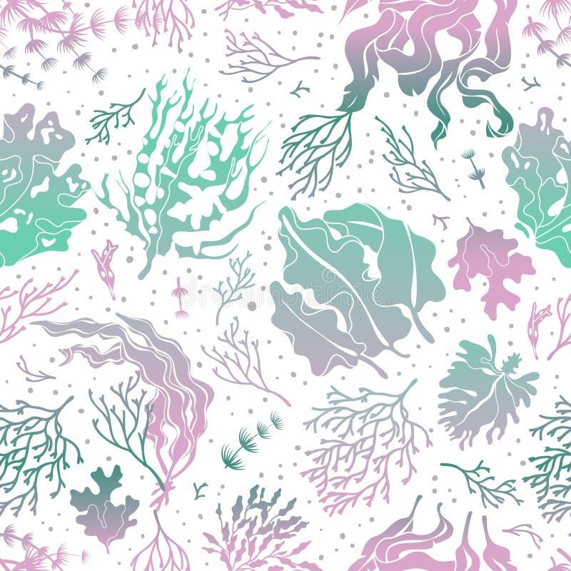 海草无缝的样式 海洋植物现出轮廓纹理 海海带不尽的传染媒介墙纸 库存例证