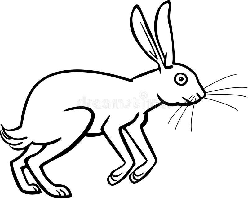 海角野兔 库存例证