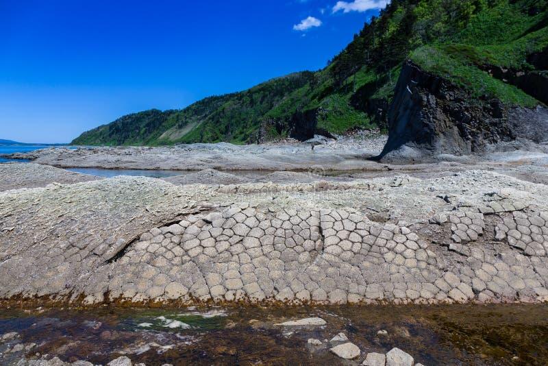 海角Stolbchaty 在Kunashir海岛的西海岸的海角  它由门捷列夫的玄武岩熔岩层组成 免版税库存图片