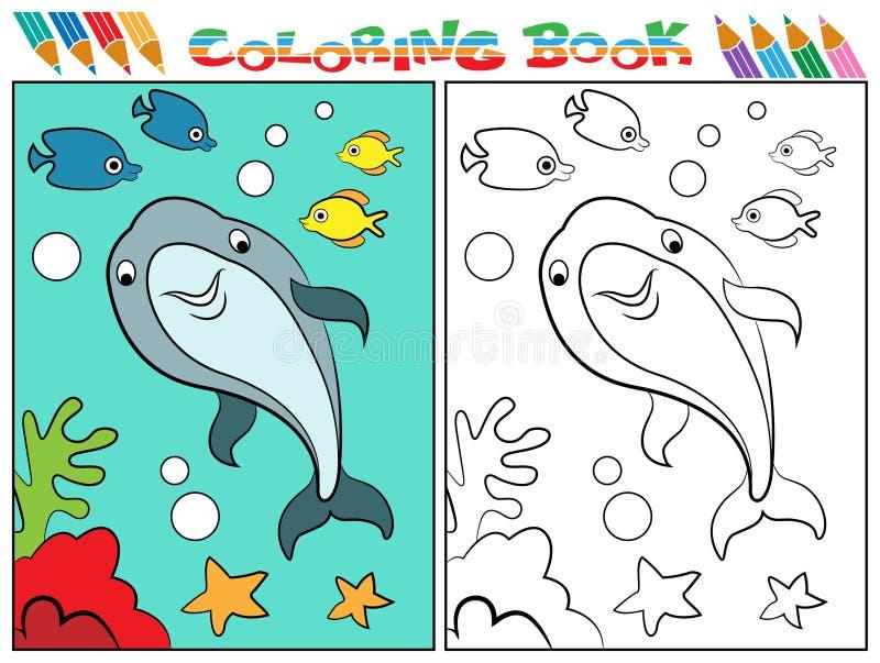 海豚彩图 库存图片