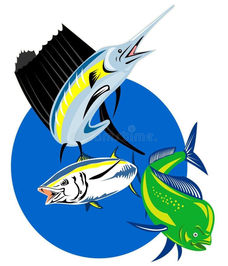 海豚鱼mahi旗鱼金枪鱼 向量例证