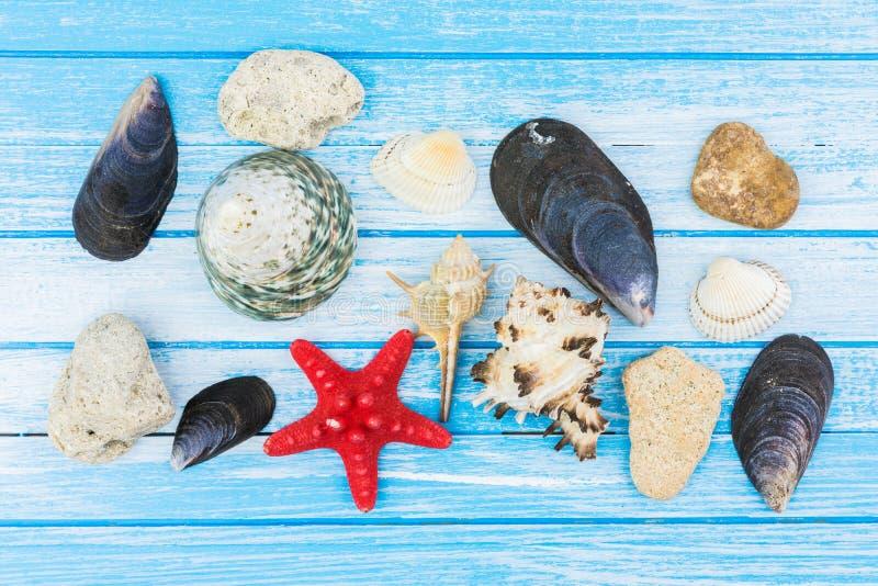 海轰击装饰和海星在蓝色和白色被绘的W 库存照片
