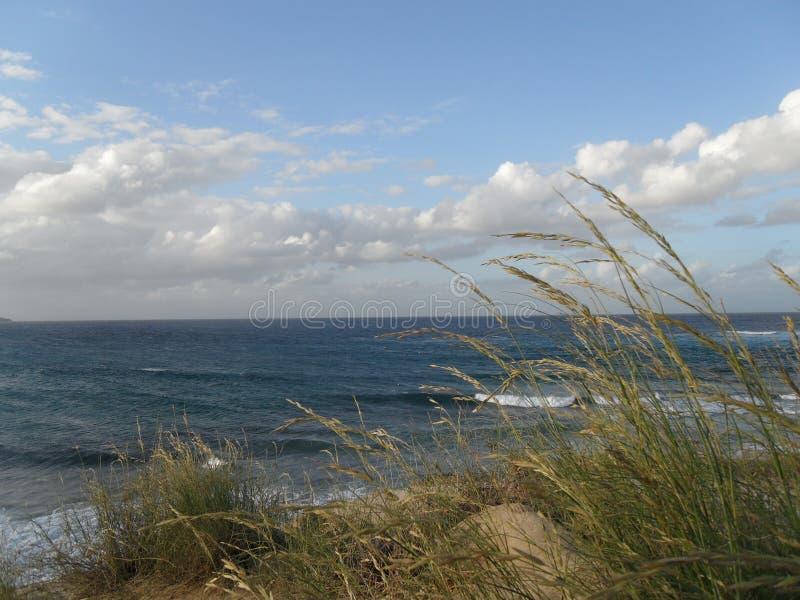 海边风景 免版税库存图片