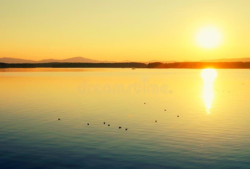 海风景 夏天日落海场面 海港口-与山脉的夏天自然 免版税库存图片
