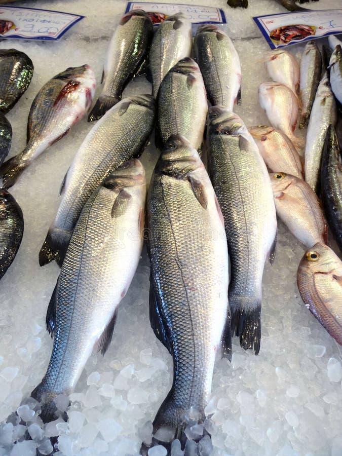 海鱼在市场上的希腊 买鱼 旅行 库存照片