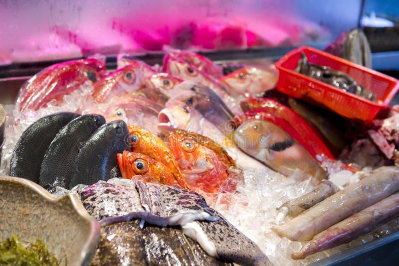 海鲜餐馆,新鲜的海鲜,各种各样的鱼贝类,台湾` s海鲜商店, 库存照片