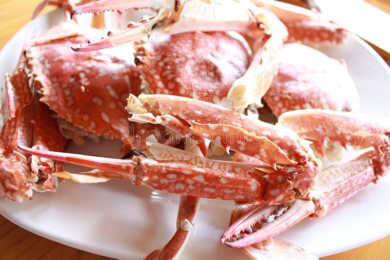 海鲜:被蒸的螃蟹 库存照片