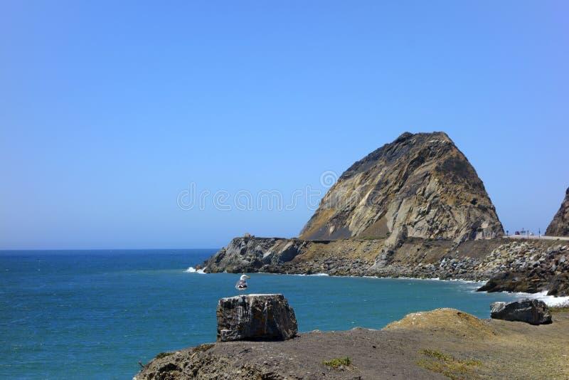 海鸥俯视的点Mugu,加州 库存照片