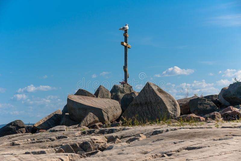 海鸥坐在岩石湖的一个老木十字架支持 免版税图库摄影