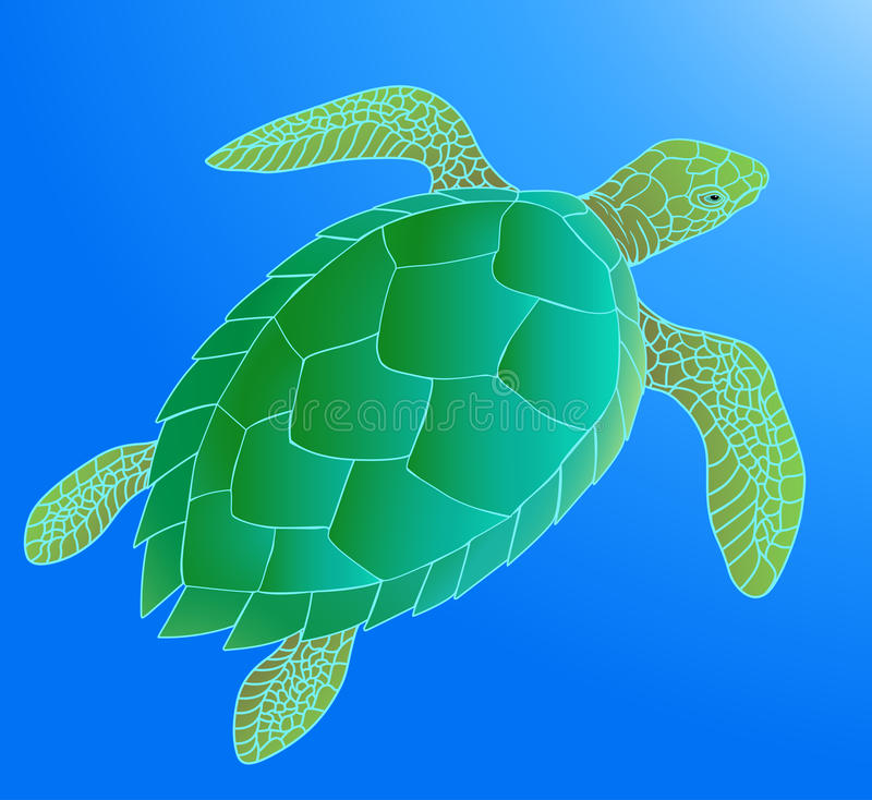 海龟 皇族释放例证
