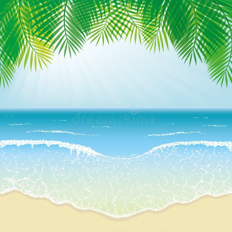 海滩、海波浪和棕榈叶 皇族释放例证