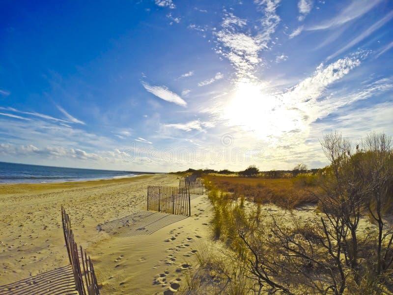 海滩作梦 库存图片