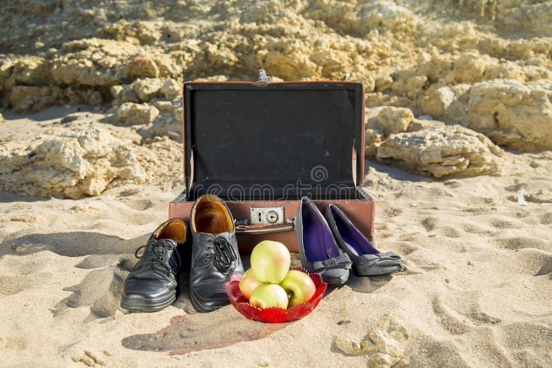 海滩其它海运火鸡 图库摄影