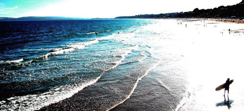 海滩冲浪者 免版税图库摄影