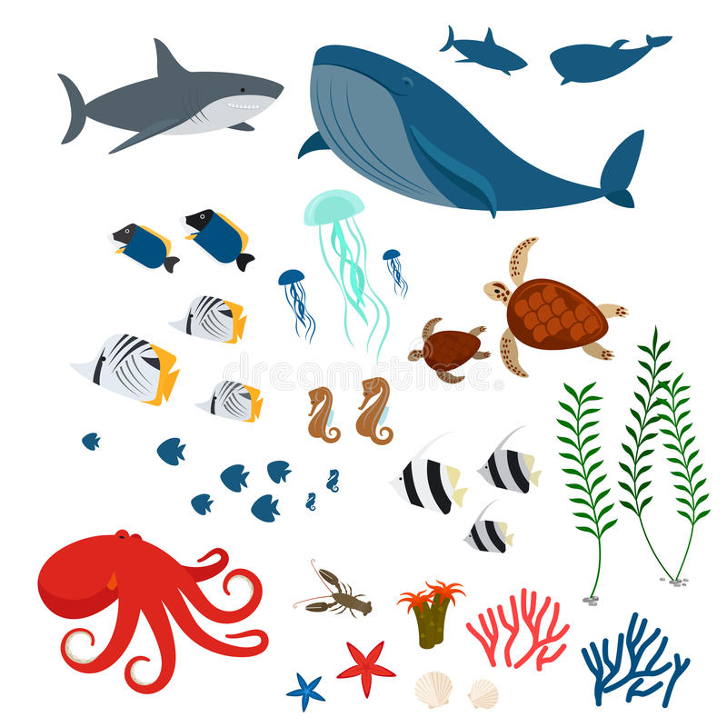 海洋动物和鱼 向量例证