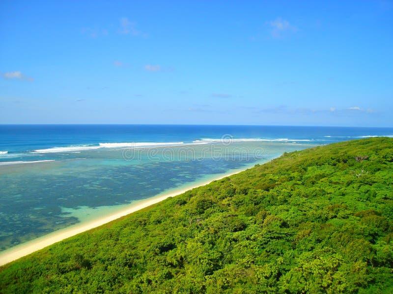 海滩和密林 免版税库存照片