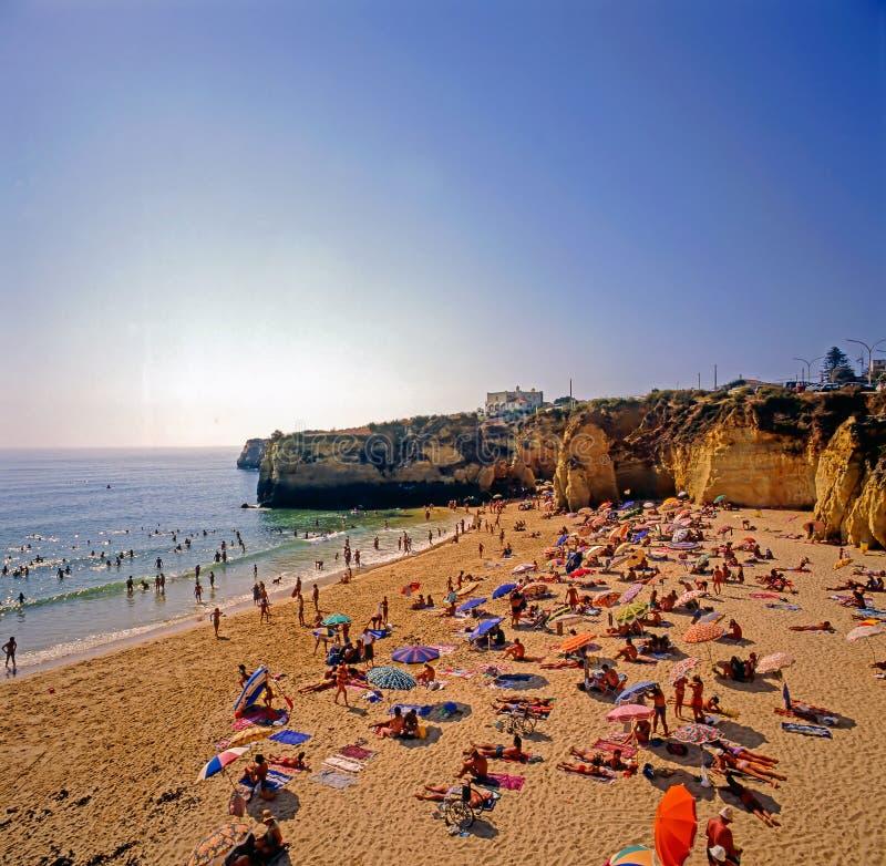海滩在拉各斯,葡萄牙 库存照片