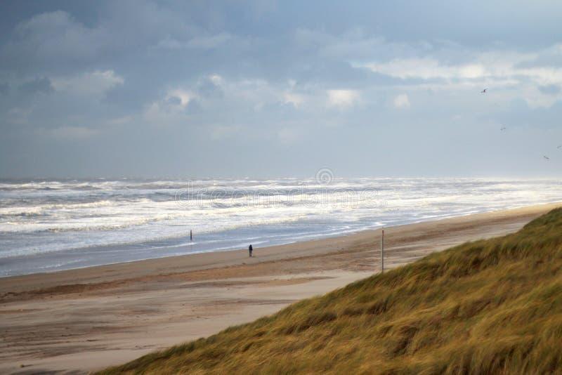 海滩在荷兰 免版税库存图片