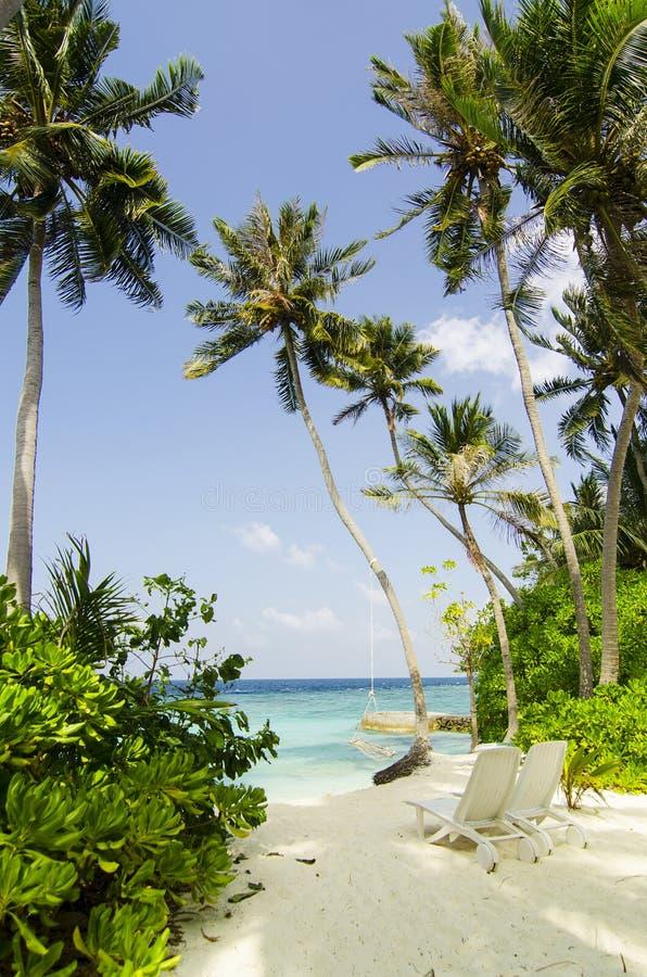 海滩在马尔代夫 免版税图库摄影