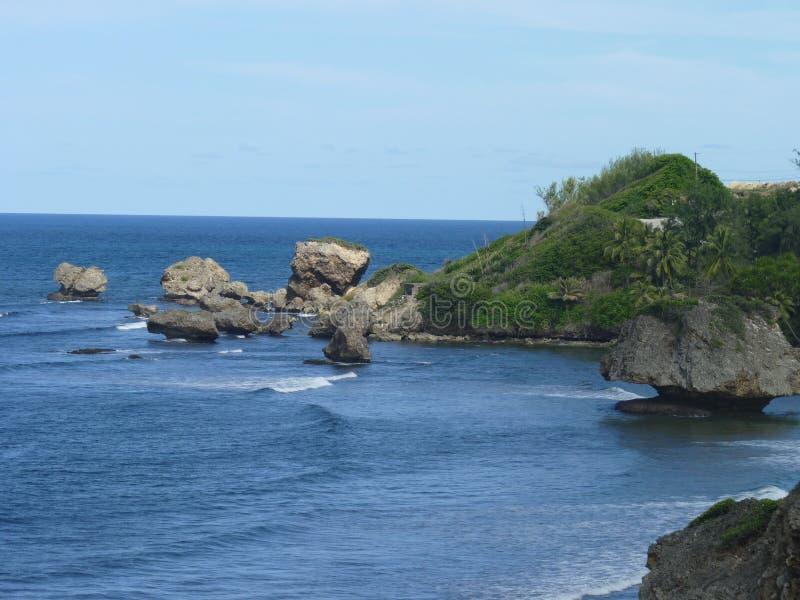 海滩在巴巴多斯,印度西部 库存照片