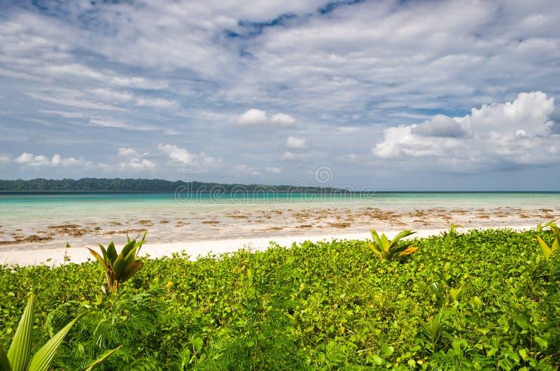 海滩在Havelock海岛,安达曼群岛,印度 免版税图库摄影