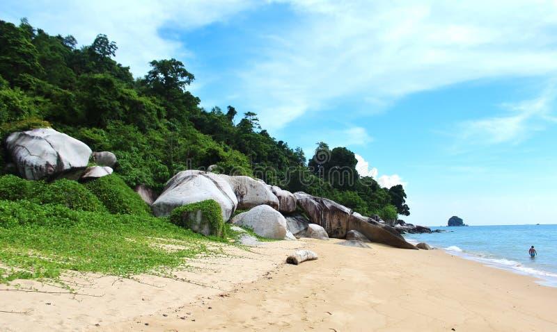 海滩宝贝 库存照片