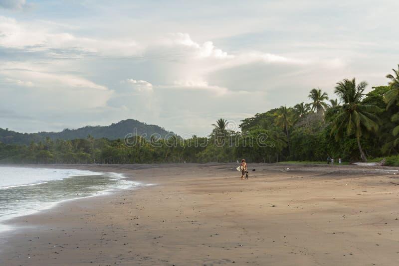 海滩水平射击冲浪者走 图库摄影