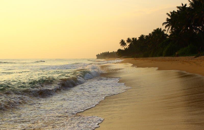海洋捉住在Koggala海滩的水 免版税库存照片
