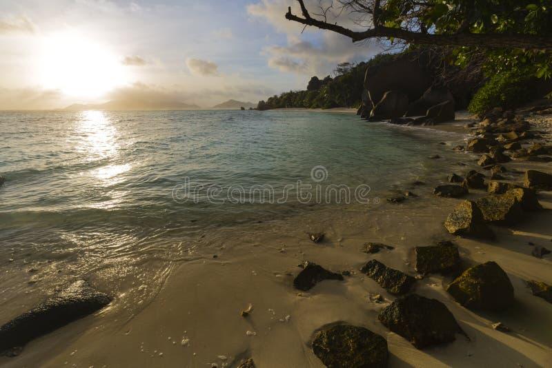 海滩日落,拉迪格岛,塞舌尔群岛 免版税图库摄影