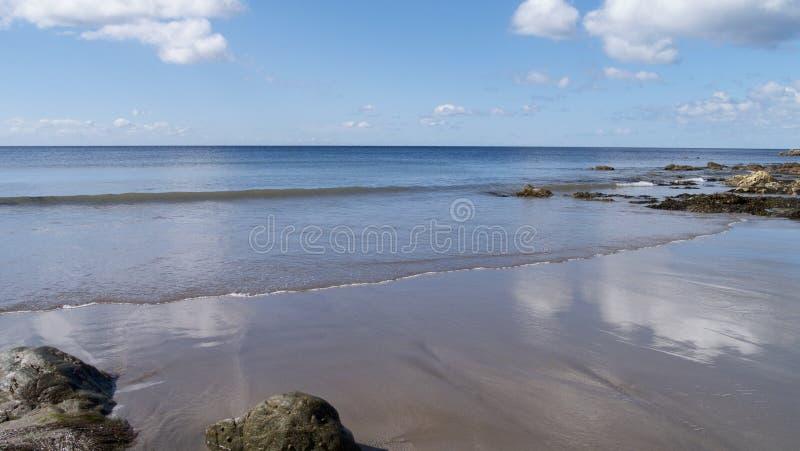 海滩春天 图库摄影