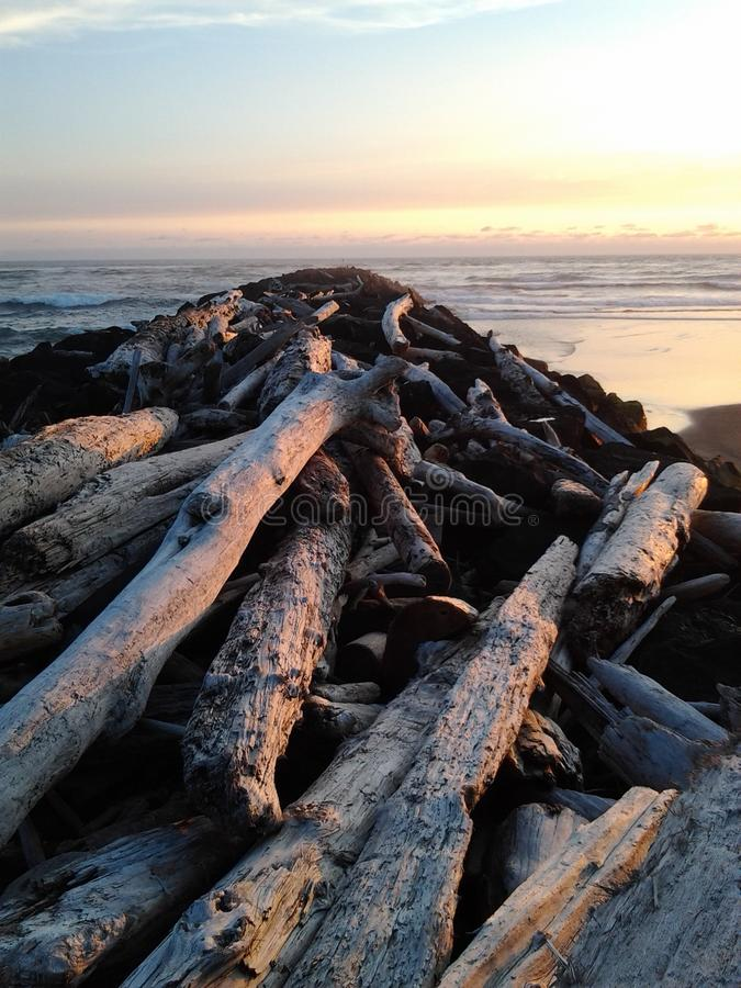 海滩木头山 库存照片