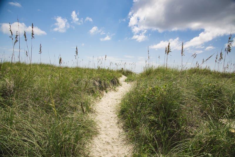 海滩沙丘走道 库存图片