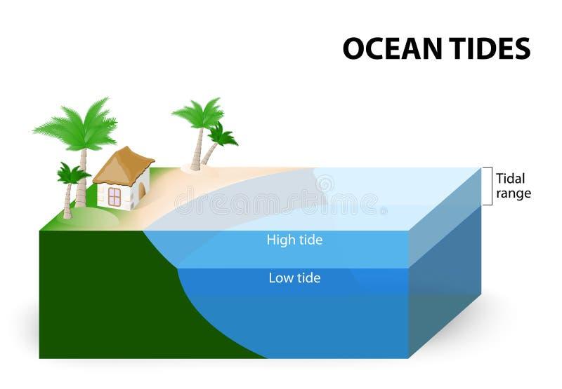 海洋浪潮 库存例证