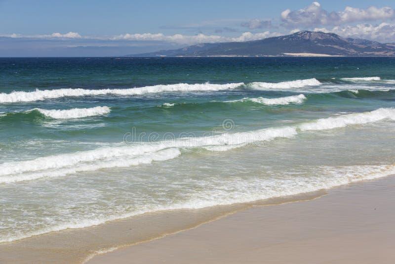 海滩火山的夏威夷 免版税库存照片