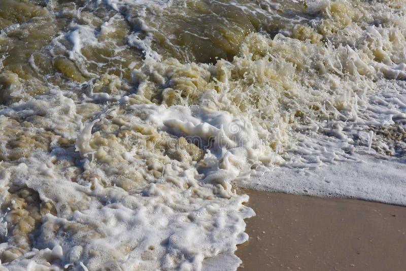 海滩水特写镜头  图库摄影