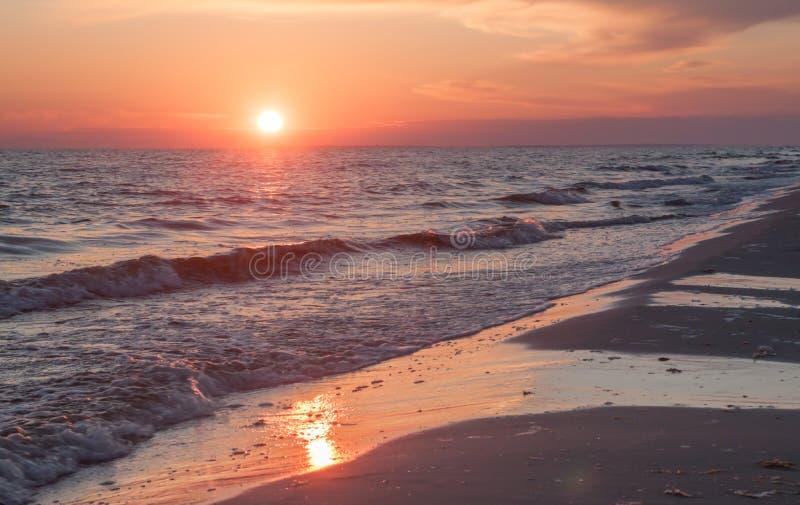 海洋生气勃勃 库存图片