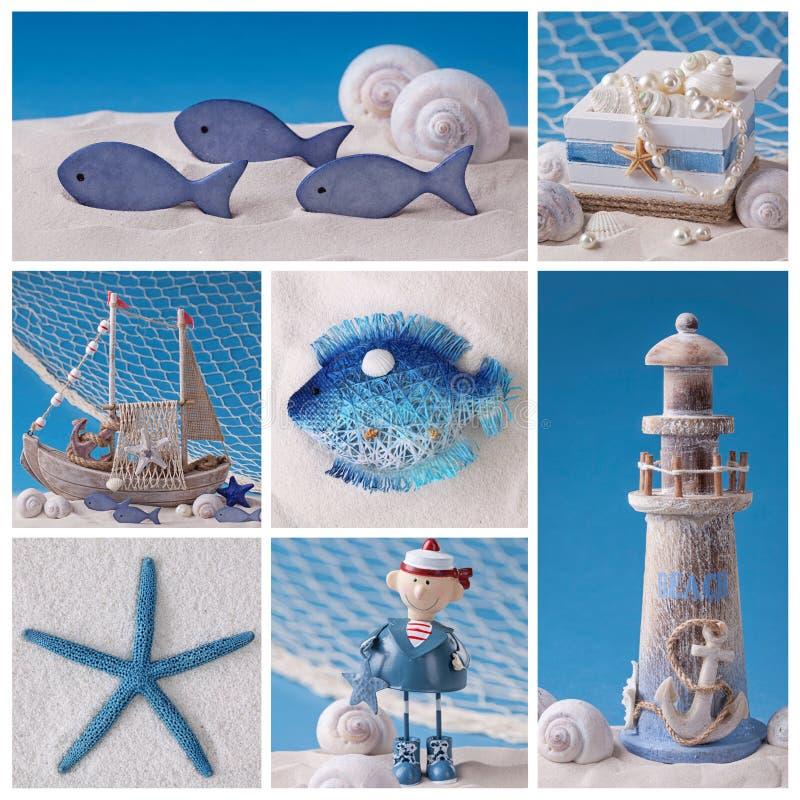 海洋生物拼贴画 库存图片