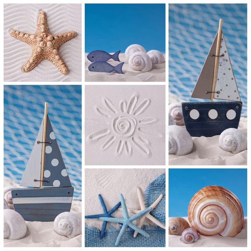 海洋生物拼贴画 库存照片