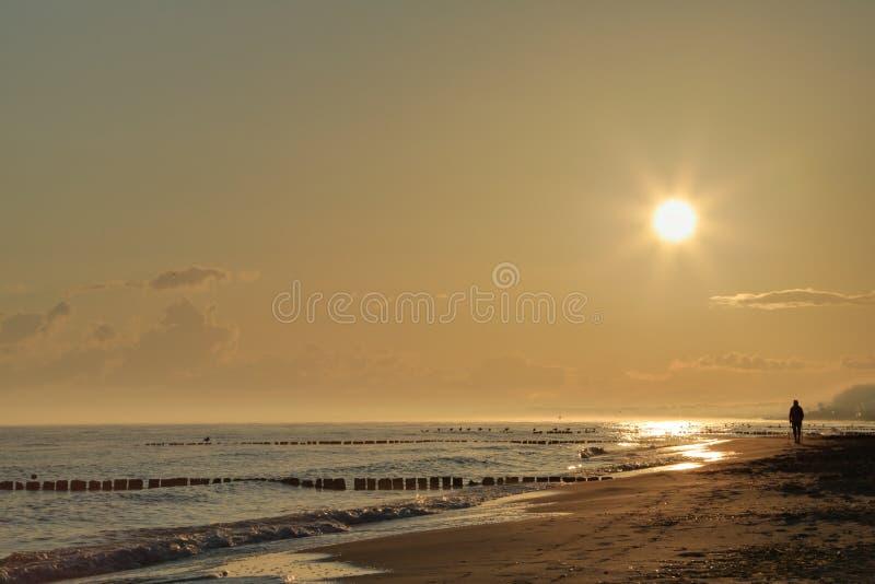 海滩的北欧步行者 免版税图库摄影