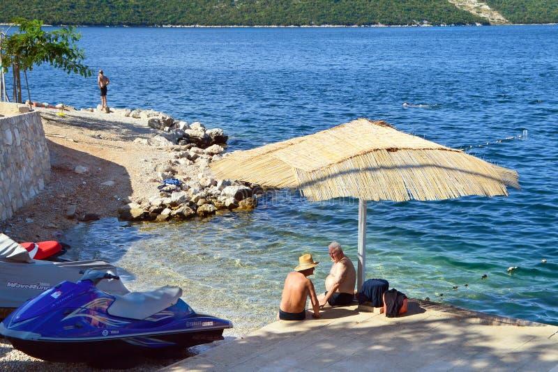 海滩的当地人涅姆 库存图片