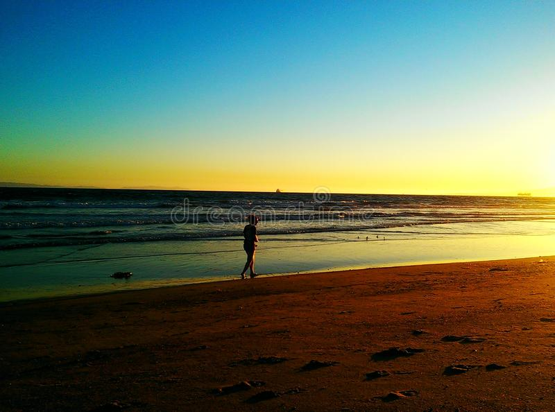 海滩的老朋友 库存图片